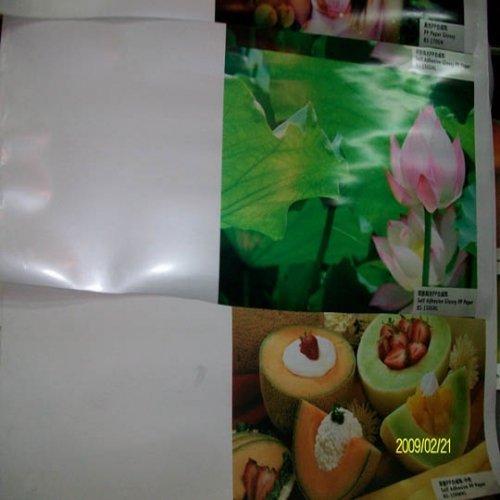 PP adhesive vinyl 120 g