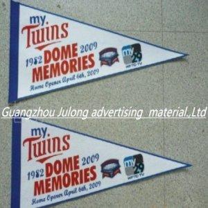 120g Solvent Printing Flag Fabric